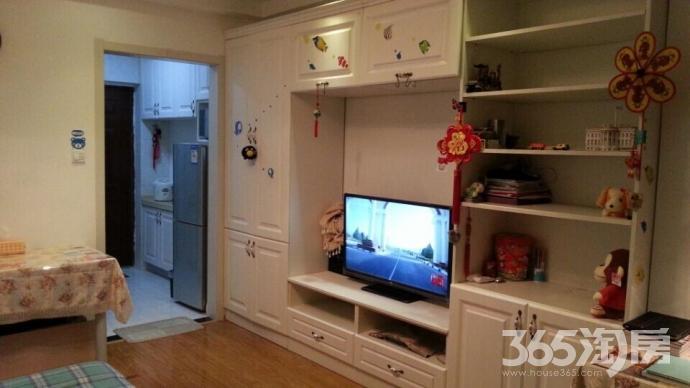 泰格公寓1室1厅1卫36平方产权房精装