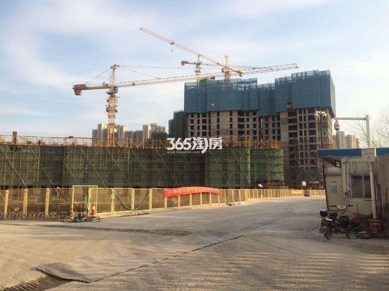 恒盛金陵湾D地块施工实景图(2.14)