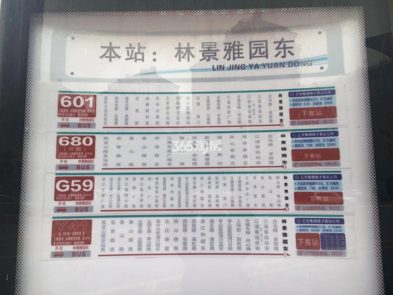 融侨观邸周边公交站点实景图(12.27)