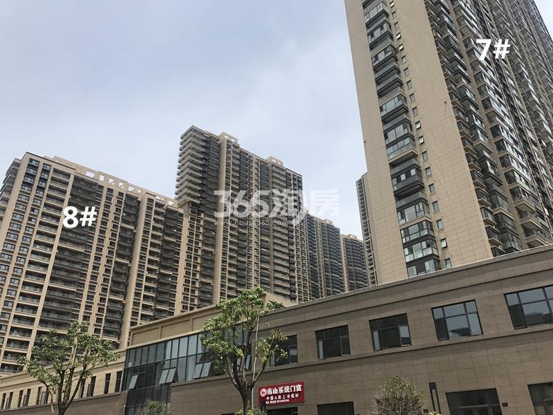 世茂外滩新城7、8号楼实景图(11.24)