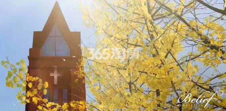 熙悦售楼处实景图(11.26)