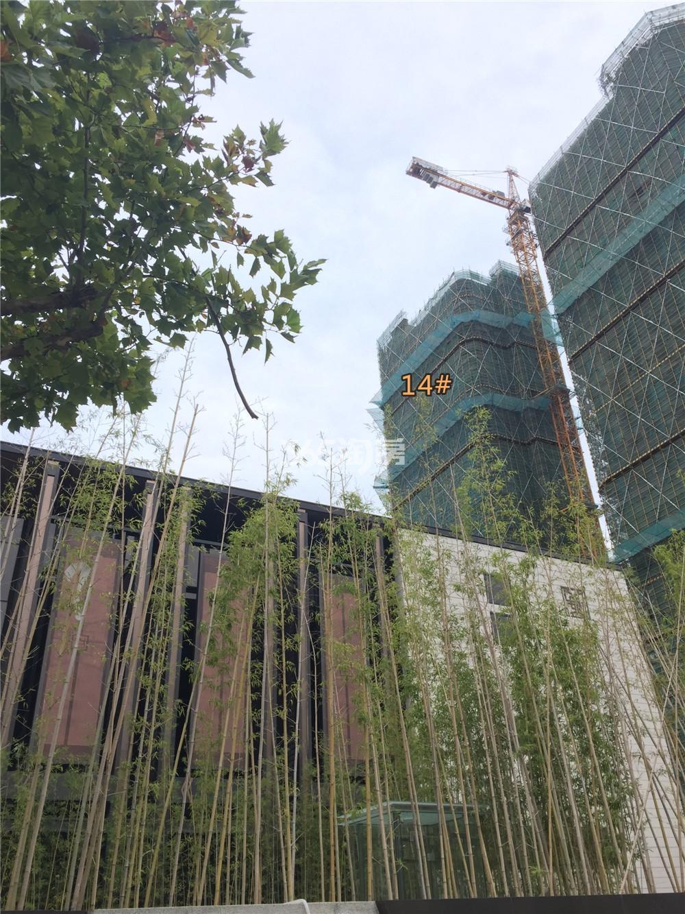 金地中心菁华14#在建实景图(9.11)