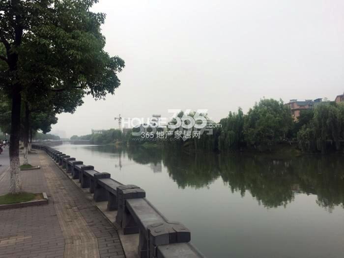 2015年6月阳光郡项目周边河景