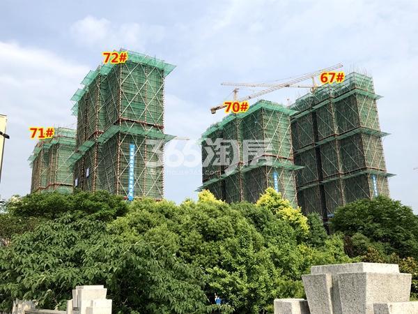 中海凤凰熙岸实景图