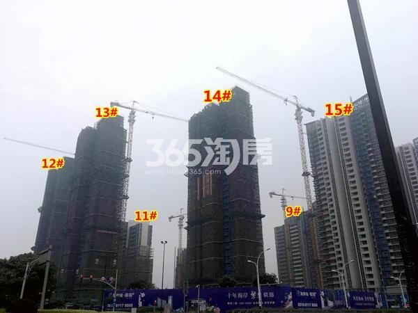海岸城·郦园9#、11-15#楼工程进度实景(2018.5摄)