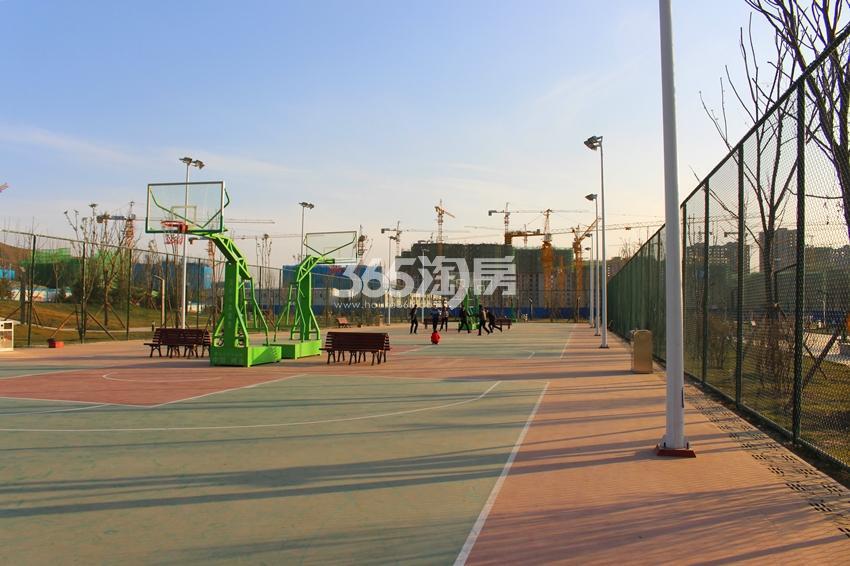 兰州碧桂园体育公园篮球场(2017.11.29)