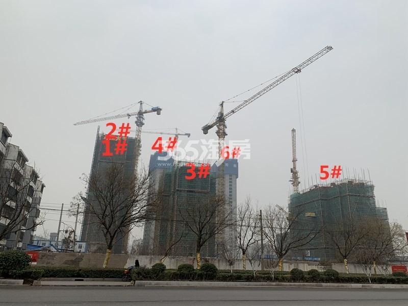 泽信公馆整体小区实景图(12.26)
