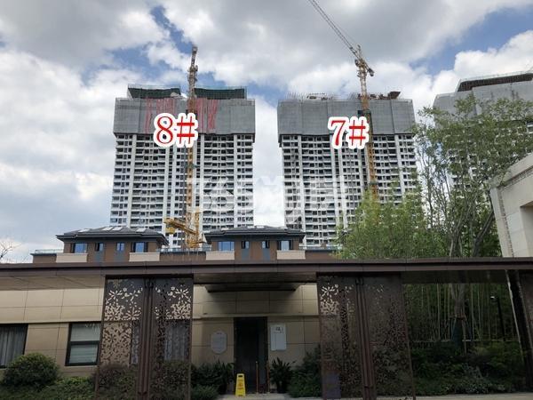 蓝光雍锦园高层7#、8#楼实景图(2018.9 摄)