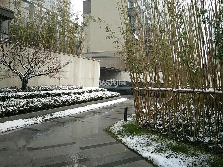 悦风华小区内部绿化景观实景图(1.9)