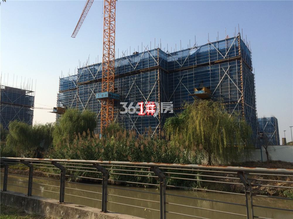 绿地华侨城海珀滨江1#实景图(10.27)