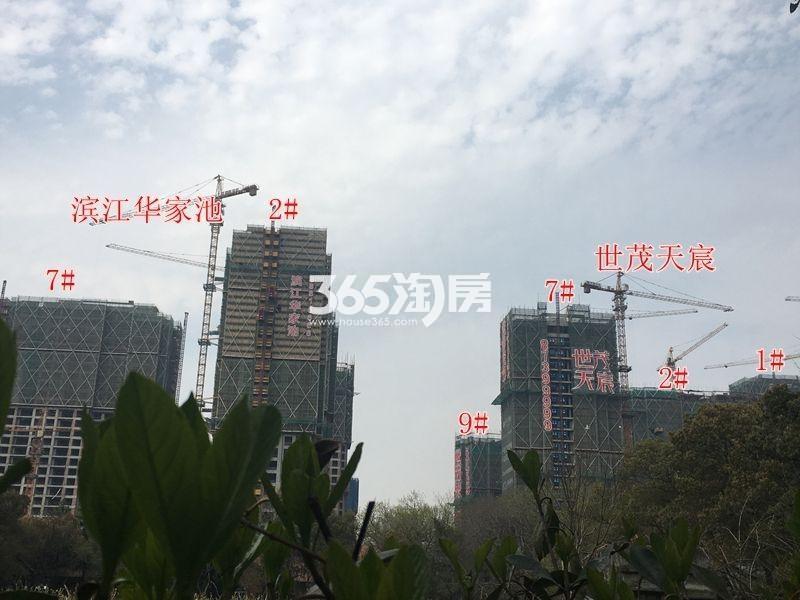 滨江华家池实景图
