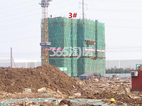 珍宝岛熙悦府在建3#楼实景图(3.14)
