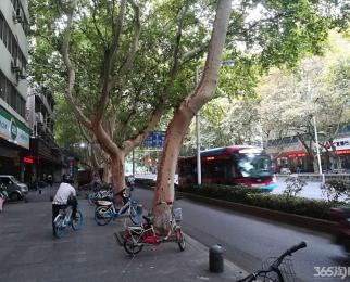 珠江路文德里沿街商铺 急租 人流量稳定 随时看房