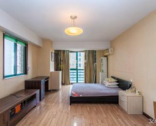 龙江 苏宁清江广场旁 靠近龙江地铁站 精装单室套 性价比