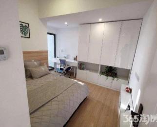 包河区、现房、精装小面积公寓、双地铁口、拎包入住、周边配套齐