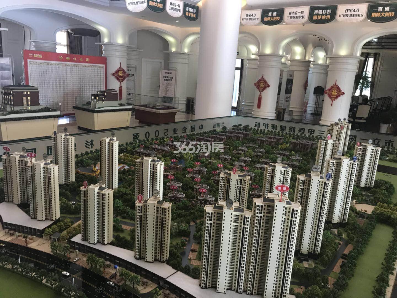 枫林天下康城实景图