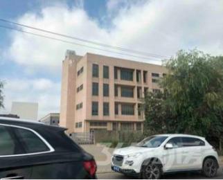 上坊104国道临街8000平米综合办公楼出租价格优惠