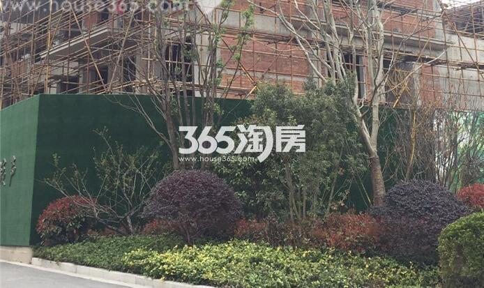 银亿东城9街区在建楼栋实景图(6.21)