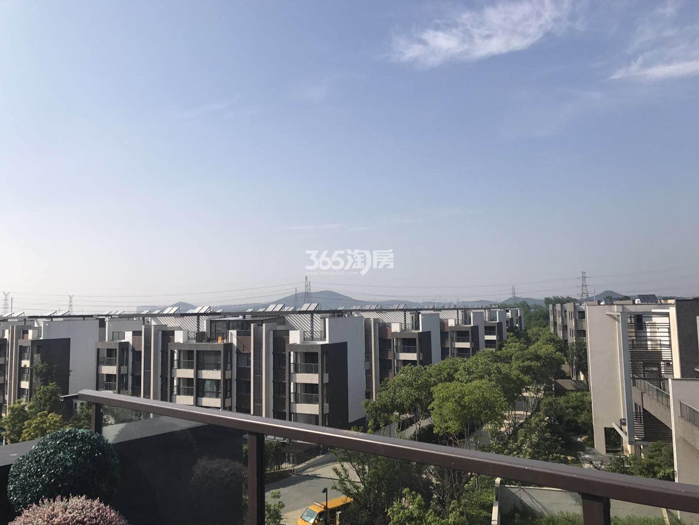 瑞安翠湖山小区楼栋实景(4.15)
