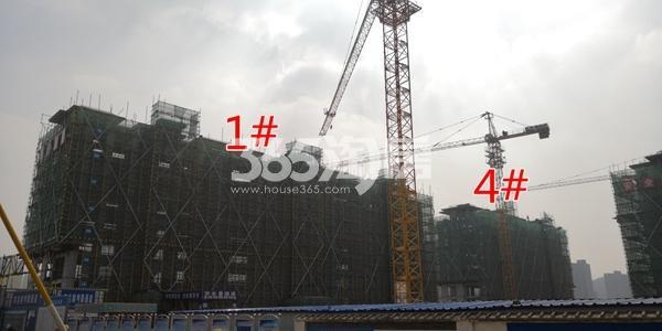 中海熙岸华府1、4#楼洋房建至8层(3.16)
