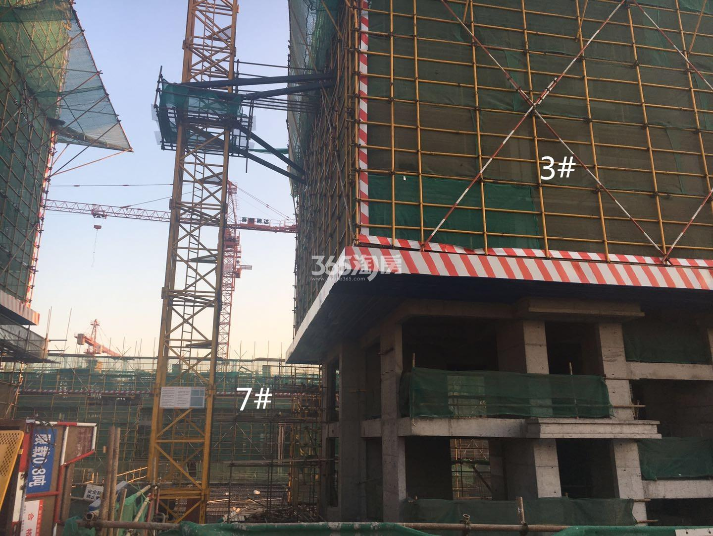江山薈3、7号楼实景图(1.19)