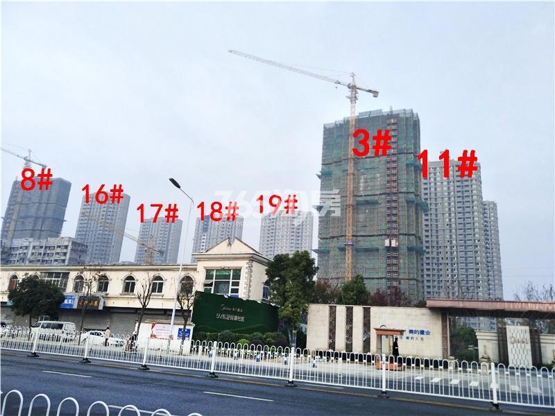美的乐城在建3、8、11、16、17、18、19#楼实景图(11.21)