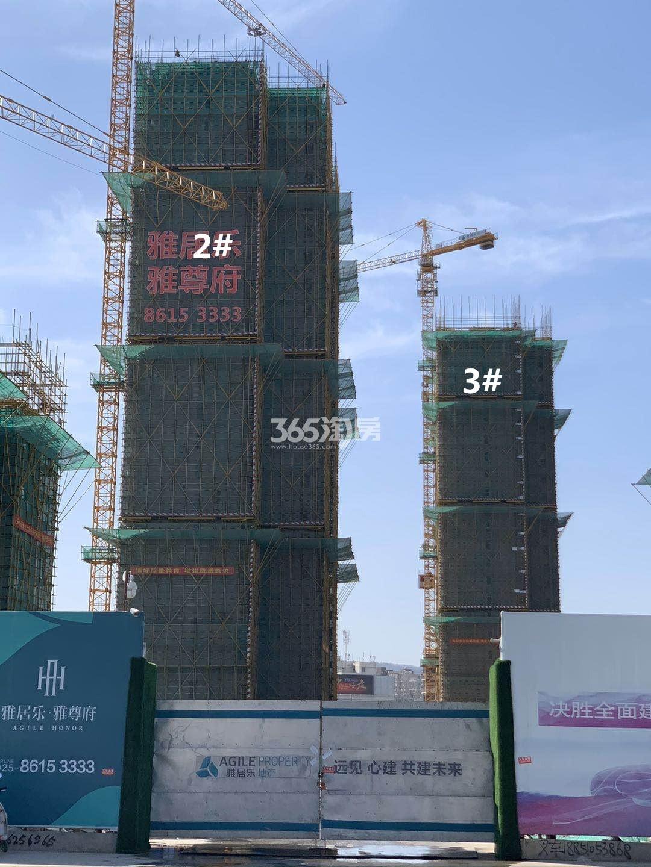 雅居乐雅尊府2、3号楼实景图(4.29)