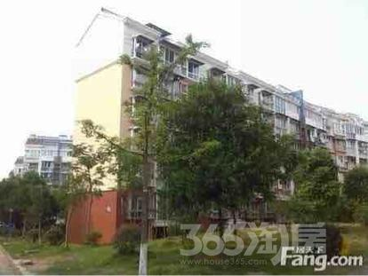 特价:江山星园5室3厅3卫120平送阁楼近80平仅106万