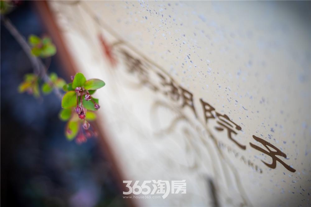 伟星芜湖院子东院园林实景,园林春色(2020年3月摄)