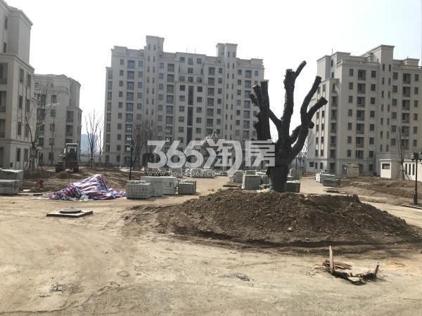 玉潭花溪中央景观实景图(3.21)