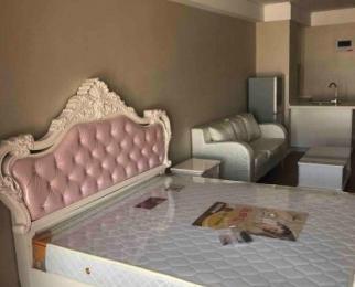 闽商国贸中心1室1厅1卫55平米整租豪华装