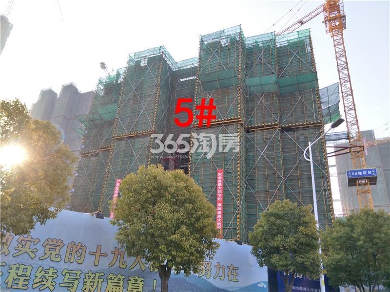 珍宝岛熙悦府5#楼工地实景图(1.24)