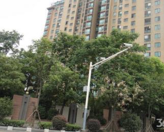 嘉业国际城 紫金西城 东渡新锐 精装单身公寓 小情侣白领拎包