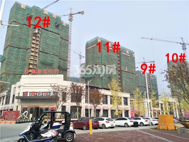 珍宝岛熙悦府在建9、10、11、12#楼实景图(11.29)