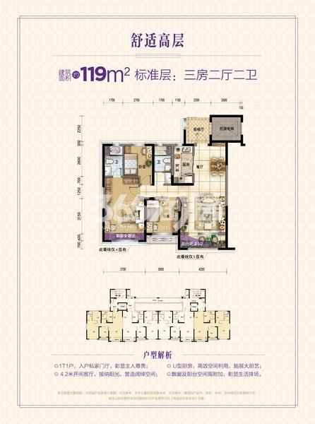 碧桂园太阳城【8栋洋房】户型图