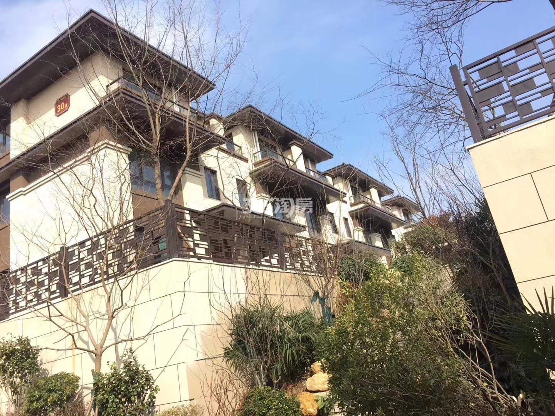 银亿东城别墅区周边景观实景图(3.27)
