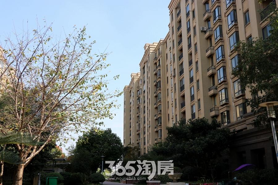 金都檀宫楼栋实景图(2018.10摄)
