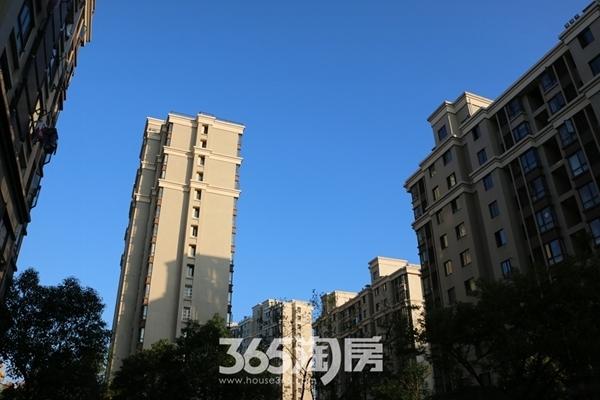 三潭音悦实景图(2016年11月摄)