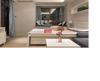 龙江 苏宁商贸城旁 临地铁口 精装单室套 采光佳 拎包入住