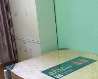 急租单身公寓 随时看房 精装修 拎包入住