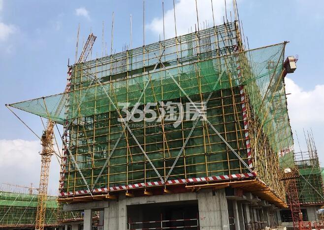 绿都地产少荃府Y-2#工程进度近景图