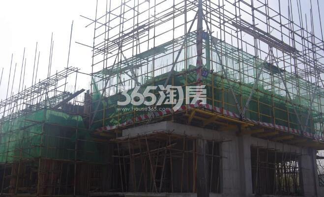 绿都地产少荃府Y-10#工程进度近景图