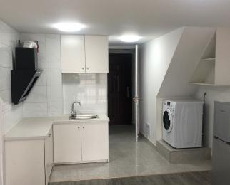 龙湖新壹城1室1厅1卫40平米精装整租