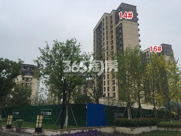 正大·万物城一期14#、16#楼高层实景(2018.6)