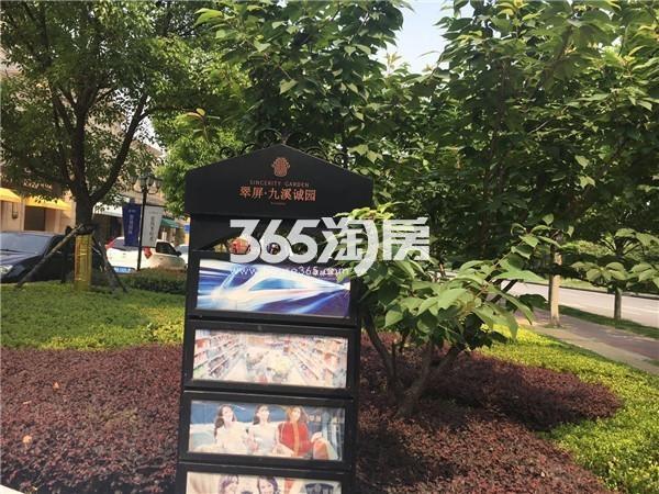 翠屏诚园路牌(9.5)