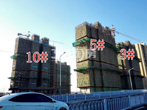 世茂东都天城10#、5#、3#工地实景图(12.19)