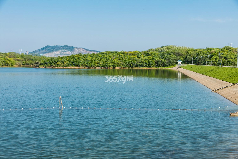 瑞安翠湖山内部湖景(12.4)