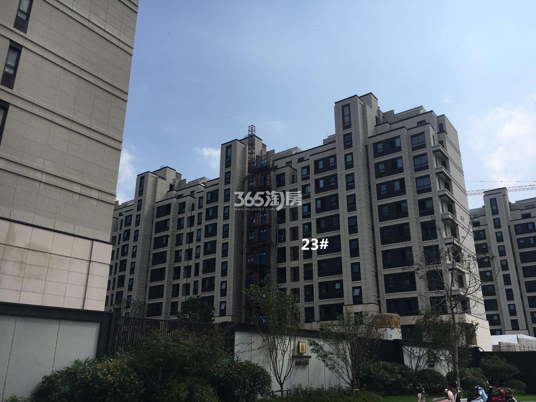 保利云禧23号楼小高层实景图(8.18)