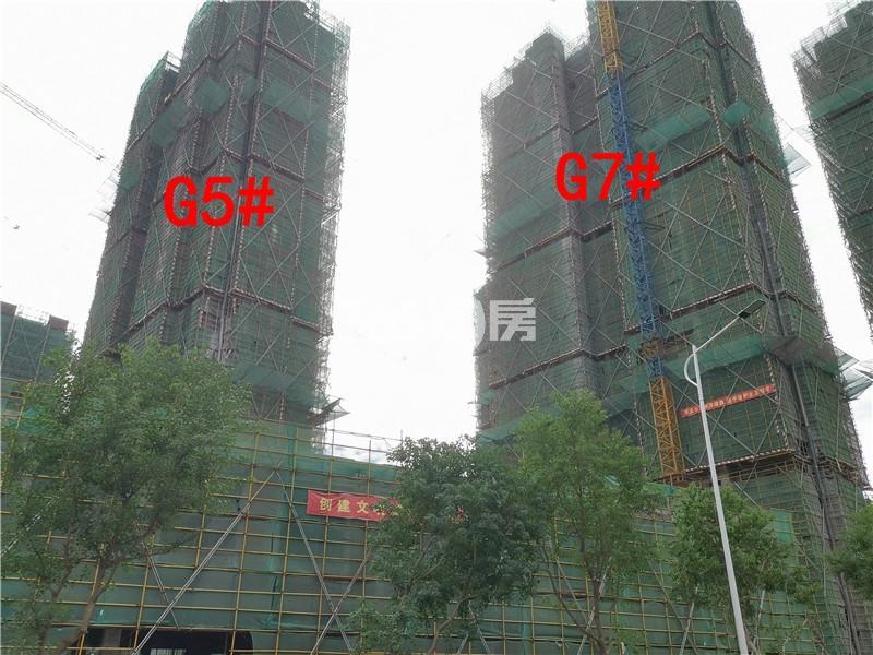 枫林学府在建G7、G5#楼实景图(9.25)