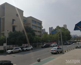 明发滨江新城三期113平米整租简装